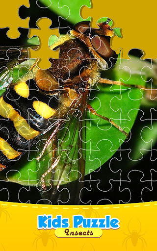 Insect Life Jigsaw Puzzle Game