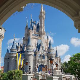 Cinderella's Castle by Denise Jones - Instagram & Mobile Android ( castle, florida, magic kingdom, wdw, cinderella )