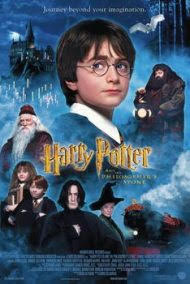HARRY POTTER 1 FELSEFE TAŞI