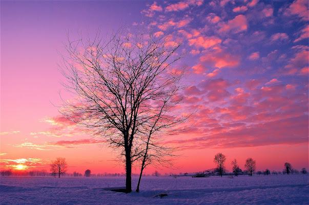 Calde nubi, fredda neve. di Daimon