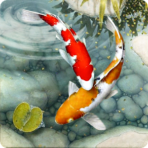 Live Fish Wallpapers 3d Water Theme Wallpaper 1 2 Apk Free Personalization Application Apk4now