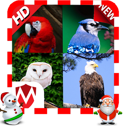 100 Bird sounds file APK for Gaming PC/PS3/PS4 Smart TV