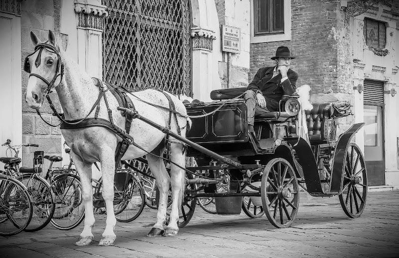 Vecchia carrozza  di Angelo Toscano