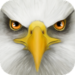 Ultimate Bird Simulator 1.3 (Paid)