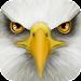 Ultimate Bird Simulator Icon