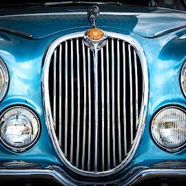 Jaguarrrrr by Antonello Madau - Transportation Automobiles