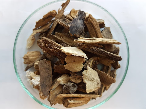 Biomass is false solution to climate change