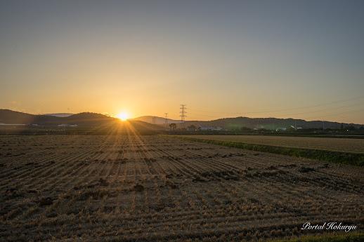 稲刈り後の夕陽