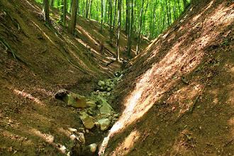 Photo: A Hidasi-völgy egyik É-i mellékvölgye az alsó-kréta korú Hidasivölgyi Márga Formáció rétegeit rejti