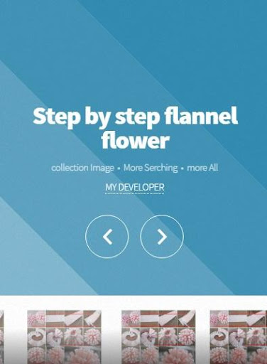 Step by step flannel flower