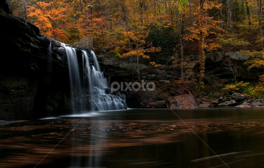 Swirly Goodness by Sarah Hampton - Landscapes Waterscapes ( water, autumn, waterscape, swirl, fall, waterfall, trees, long exposure, leaves, landscape )