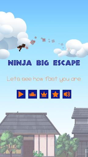 Ninjja Big Escape