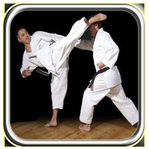 Kyokushinkai Technique (app)