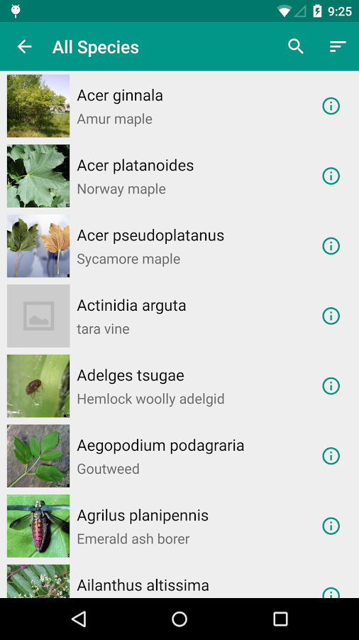 Outsmart Invasive Species- screenshot