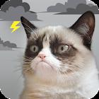 Grumpy Cat Clima icon