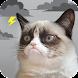 Grumpy Cat Weather