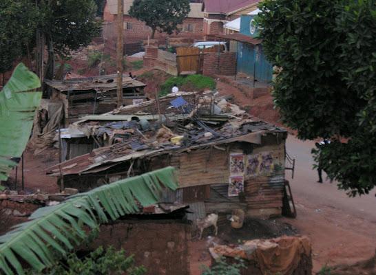 Uganda di Franco55