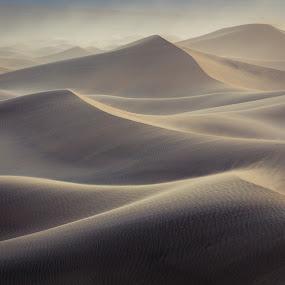 Sandstorm, Death Valley NP by Sandra Woods - Landscapes Deserts ( death valley, wind, blowing sand, death valley national park, sandstorm, california, usa, united states )