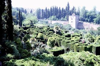 Photo: 024- Andalousie-Grenade l'Alhambra