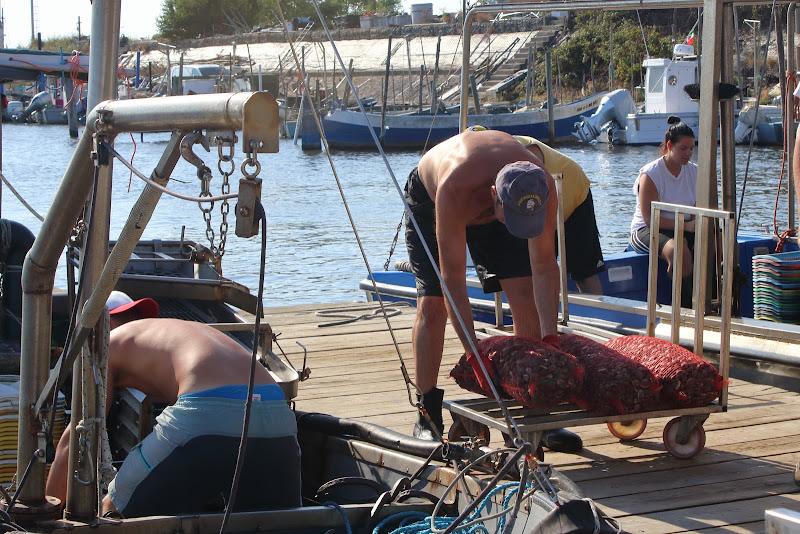 Gorino: Pescatori di vongole di roberto_rusticali