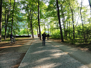 Photo: Tiergarten