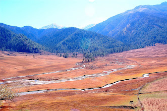 Photo: NEPAL-The same place complete with tumbling streams and horses