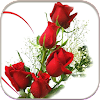 HD Rose Flowers Live Wallpaper