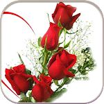 HD Rose Flowers Live Wallpaper Icon