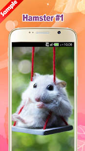 Hamster Wallpapers - náhled