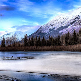 Spring Thaw by Patricia Phillips - Landscapes Travel ( alaska portage rivers placer spring )