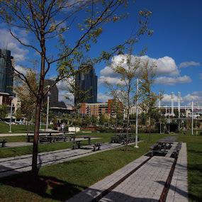 Smale Riverfront by Karen Harris - City,  Street & Park  City Parks ( tables, park, buildings, trees, cincinnati, cityscape, sidewalk )