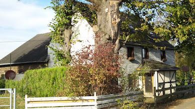 Photo: An der Weggabel befindet sich dieses idyllisch gelegene Haus.