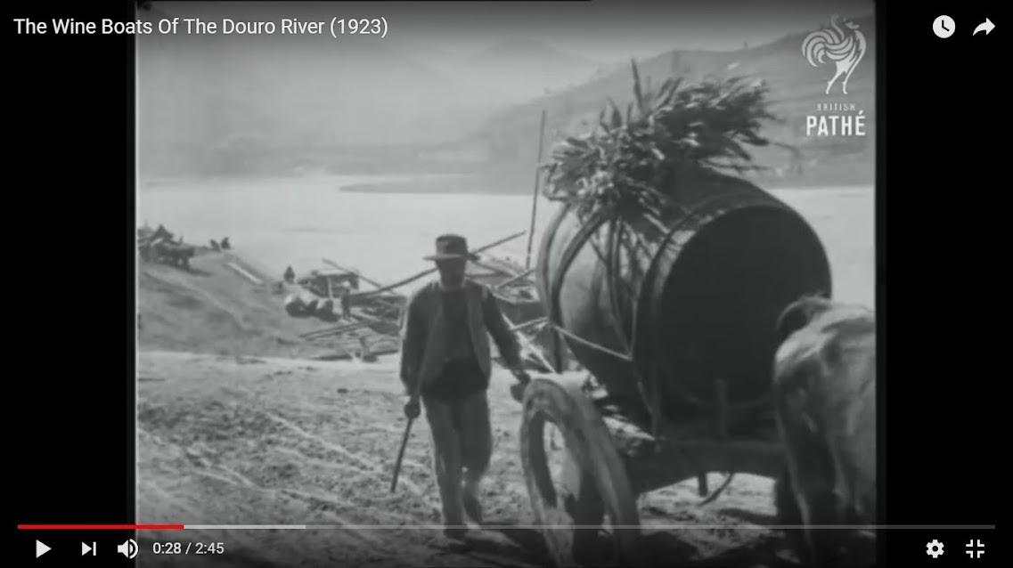 Vídeos - O Douro de antigamente