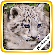 Jigsaw Puzzles: Cute Animals