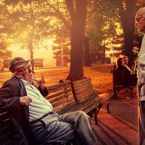 Golden day by Bojan Dzodan - People Street & Candids ( senior group )