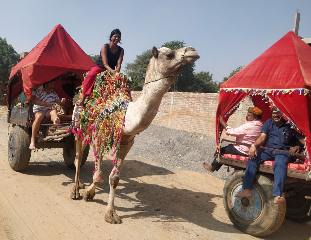camel+safari+pushkar+fair+2018