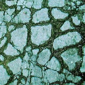 cracked cement roadside by Jumari Haryadi - Abstract Patterns ( abstract, pattern, crack, rock, roadside )