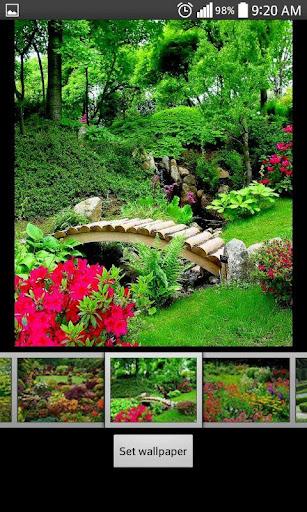花园直播高清壁纸