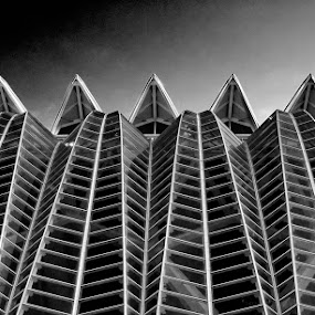Alien Skin by Thilo Bayer - Buildings & Architecture Architectural Detail ( pwcbuilding )