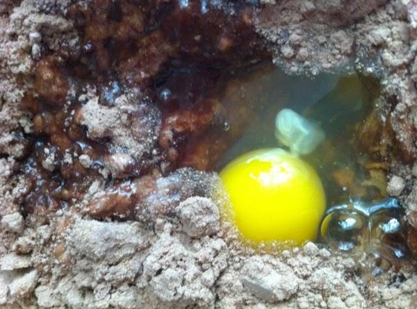 Add eggs, water, oil, and yogurt
