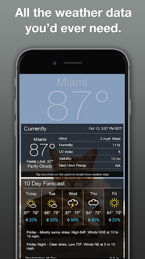 Grumpy Cat Weather 4.9.8 Apk for Android 5