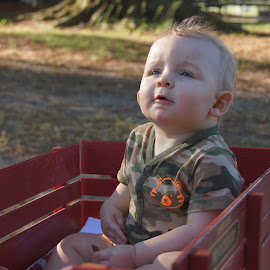 Salem's Gaze by Melissa Osborne - Babies & Children Children Candids ( love, wagon, candid, baby, boy )