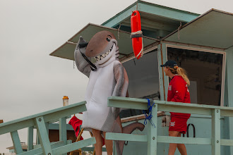 Photo: Dusky helping out the Hermosa Beach lifeguards. Credit: Chris Panagakis
