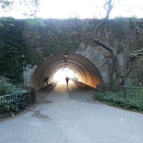 by Paul Stanley - City,  Street & Park  City Parks ( sunset, runner, nyc, bridge, riverside park,  )