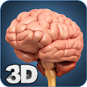 Brain Anatomy Pro. icon