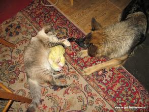 Photo: Zullen we samen spelen?