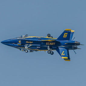 Blue Angels FORTUS Pass by Ron Malec - Transportation Airplanes