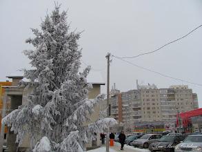 Photo: 2010.12.31
