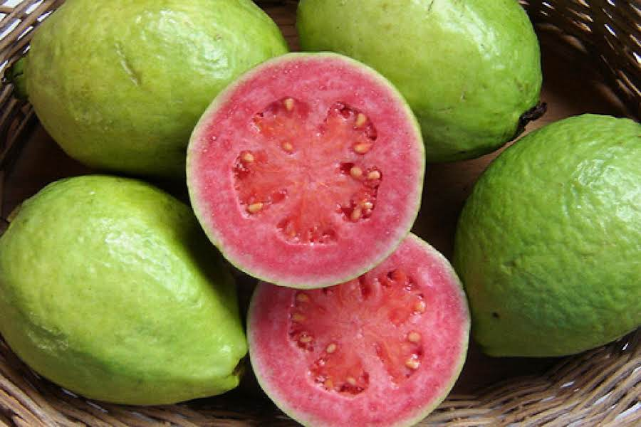 Image result for pink Guavas