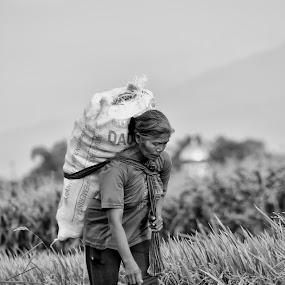 Hasil panen by Wahyu Tri - People Portraits of Women
